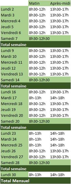 heures de travail réalisées par le salarié au cours du mois jour par jour